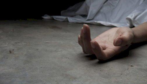 उत्तरकाशी: घास काटने गई युवती की खाई में गिरने से मौत