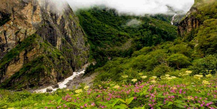 अक्टूबर अंत तक पर्यटकों के लिए खुली रहेगी विश्व प्रसिद्ध फूलों की घाटी