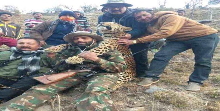 अल्मोड़ा: स्यालदे का  आदमखोर हो चुका गुलदार ढेर, ग्रामीणों ने ली राहत की सांस