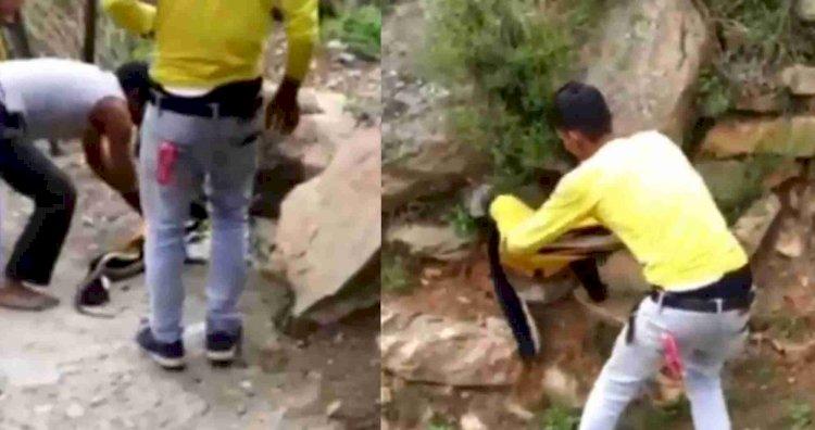 पौड़ी: 500 रुपये की शर्त पर कोबरा से भिड़े शराबी युवक, एक ने गंवाई जान