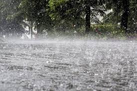 Weather Report:उत्तराखंड के इन जिलों में शुक्रवार से हो सकती है भारी बारिश,पढे़ं पूरी रिपोर्ट