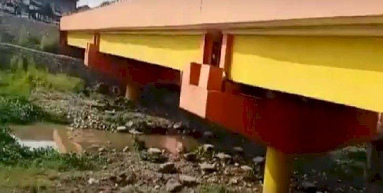 वायरल वीडियो: यहां पुल के नीचे मिला मगरमच्छ का घोंसला, देखने वालों का जुटा मजमा